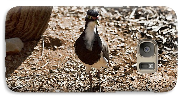 Banded Lapwing Galaxy Case by Douglas Barnard