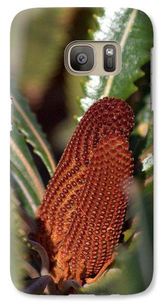 Galaxy S7 Case featuring the photograph Banksia by Miroslava Jurcik