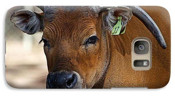Banteng Girl Galaxy S7 Case by Miroslava Jurcik