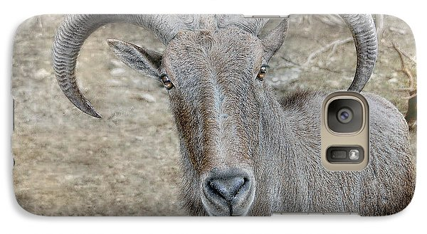Galaxy Case featuring the photograph Barbary Sheep by Dyle   Warren