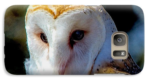 Galaxy Case featuring the photograph Barn Owl Portrait by Constantine Gregory