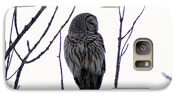 Galaxy Case featuring the photograph Barred Owl 3  by Steven Clipperton