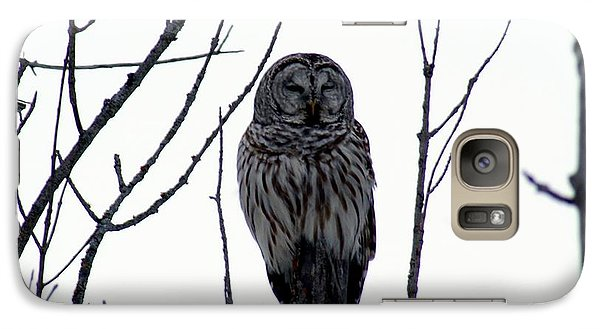 Galaxy Case featuring the photograph Barred Owl 4 by Steven Clipperton
