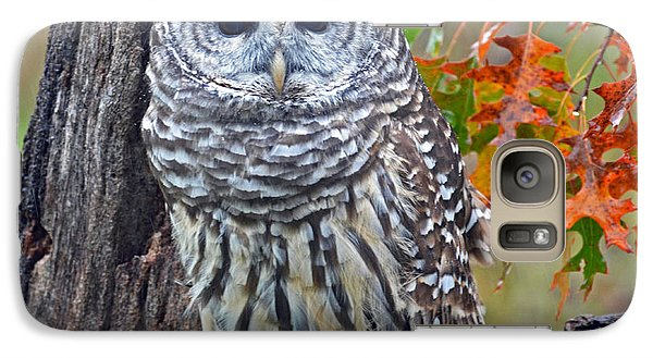 Galaxy Case featuring the photograph Barred Owl by Rodney Campbell
