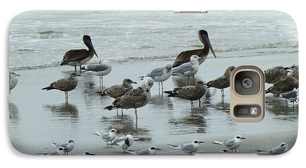 Galaxy Case featuring the photograph Beach Birds by Judith Morris