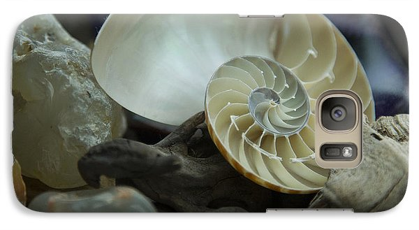 Galaxy Case featuring the photograph Beach Treasures 2 by Jeanette French