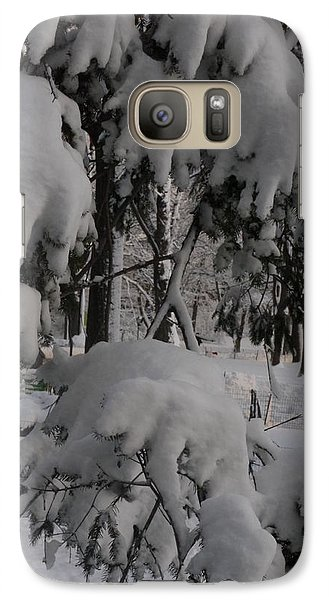 Galaxy Case featuring the photograph Bear Claws by Winifred Butler
