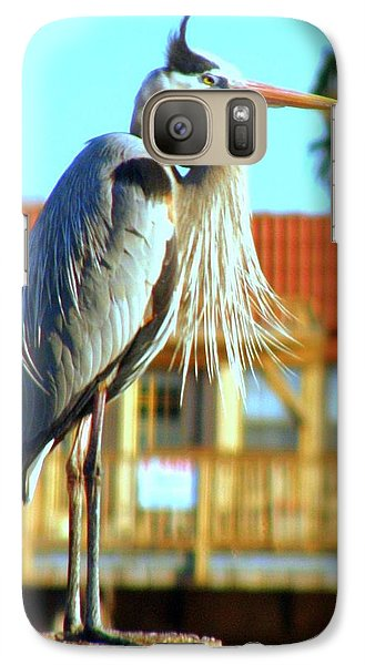 Galaxy Case featuring the photograph Bearded Great Blue Heron by Antonia Citrino