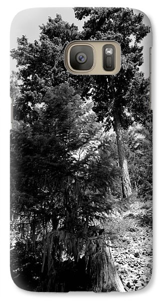 Galaxy Case featuring the photograph Bearded Trees - Whistler by Amanda Holmes Tzafrir