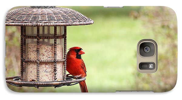 Galaxy Case featuring the photograph Beautiful Cardinal by Trina  Ansel