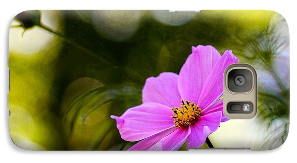 Galaxy Case featuring the photograph Beautiful Evening Pink Cosmos Wildflower by Tracie Kaska