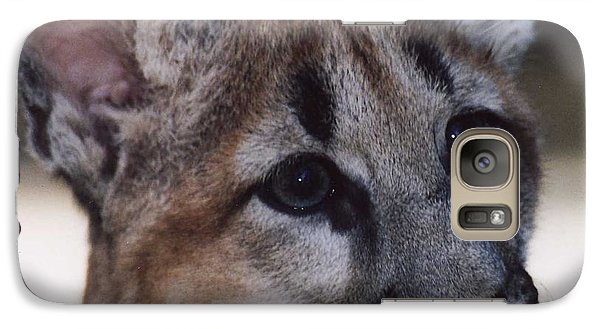Galaxy Case featuring the photograph Beautiful Face-cougar Cub by Myrna Walsh