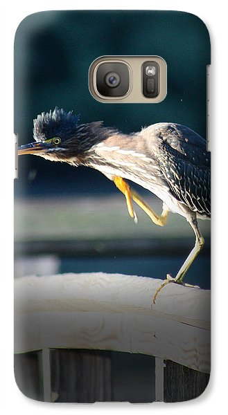 Galaxy Case featuring the photograph Beautiful Green Heron by Anita Oakley