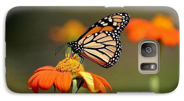 Galaxy Case featuring the photograph Beautiful Monarch by Living Color Photography Lorraine Lynch