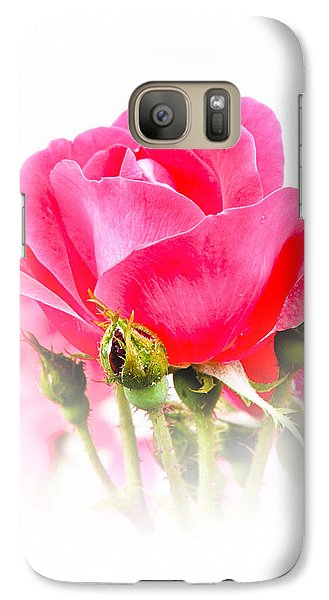 Galaxy Case featuring the photograph Beautiful Rose by Anita Oakley