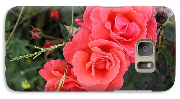 Galaxy Case featuring the photograph Beautiful Roses by Cendrine Marrouat