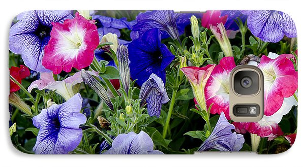 Galaxy Case featuring the photograph Beautiful Summer Annuals by Wilma  Birdwell