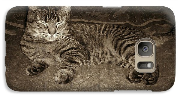 Galaxy Case featuring the photograph Beautiful Tabby Cat by Absinthe Art By Michelle LeAnn Scott