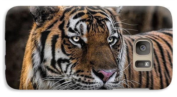 Galaxy Case featuring the photograph Beautiful Tiger Photograph by Tracie Kaska