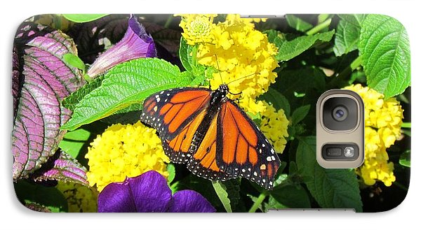 Galaxy Case featuring the photograph Beauty All Around by Cynthia Guinn