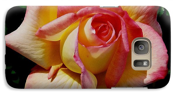 Galaxy Case featuring the photograph Beauty At Its Best by Debby Pueschel