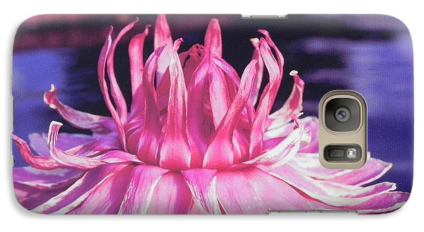 Galaxy Case featuring the photograph Beauty Of Pink At The Ny Botanical Gardens by Chrisann Ellis