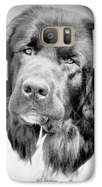 Galaxy Case featuring the photograph Beauty Pup by Barbara Dudley