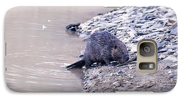 Beaver On Dry Land Galaxy S7 Case