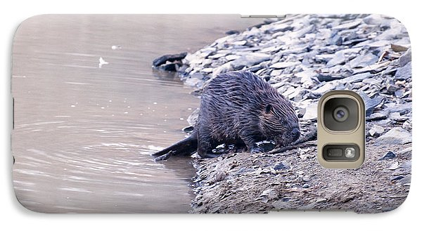 Beaver On Dry Land Galaxy S7 Case by Chris Flees