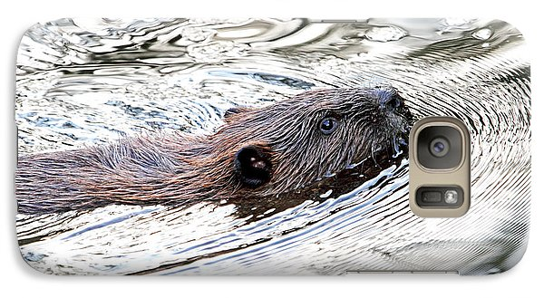 Galaxy Case featuring the photograph Beaver Swimming In A Pond by Peggy Collins