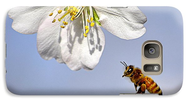 Galaxy Case featuring the photograph Bee And The Almond Blossom by AJ  Schibig