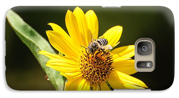 Galaxy Case featuring the photograph Bee Flower by John Johnson