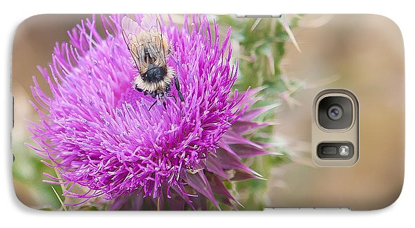 Galaxy Case featuring the photograph Bee On A Thistle Flower by Todd Soderstrom
