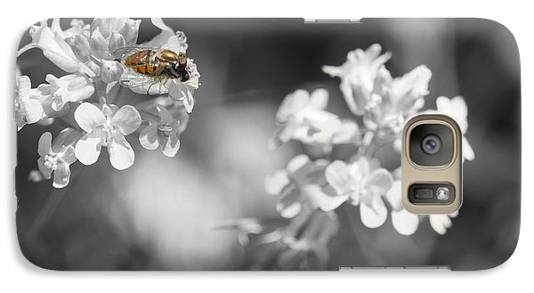 Galaxy Case featuring the photograph Bee On Black And White Flowers by Todd Soderstrom