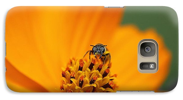 Galaxy Case featuring the photograph Bee On Cosmo by Lisa L Silva