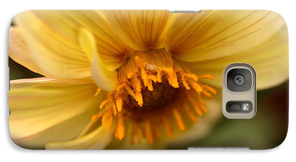 Galaxy Case featuring the photograph Bee Trap by Wanda Brandon