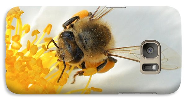 Galaxy Case featuring the photograph Bee-u-tiful Squared by TK Goforth