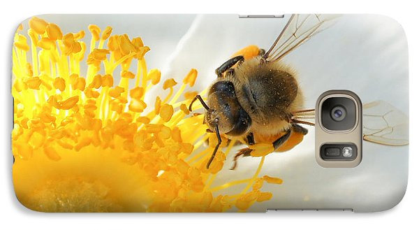Galaxy Case featuring the photograph Bee-u-tiful by TK Goforth