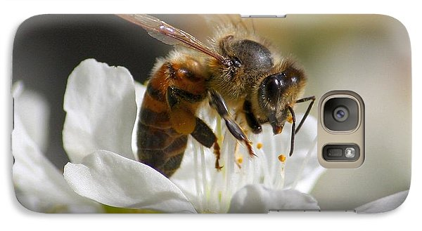 Galaxy Case featuring the photograph Bee4honey by Patrick Witz