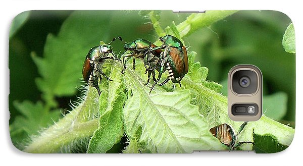 Galaxy Case featuring the photograph Beetle Posse by Thomas Woolworth