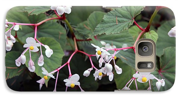 Galaxy Case featuring the photograph Begonia Olsoniae by Gerry Bates