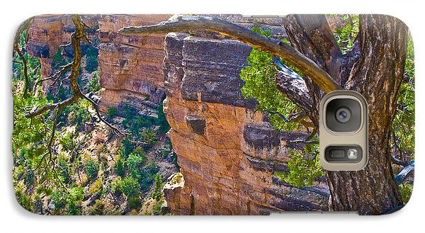 Galaxy Case featuring the photograph Behind The Tree Grand Canyon Lan163 by G L Sarti