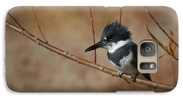 Kingfisher Galaxy S7 Case - Belted Kingfisher by Ernie Echols