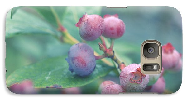 Galaxy Case featuring the photograph Berries For You by Rachel Mirror
