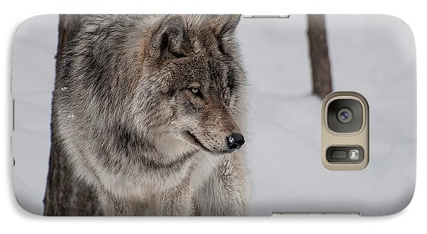 Galaxy Case featuring the photograph Big Bad Wolf by Bianca Nadeau