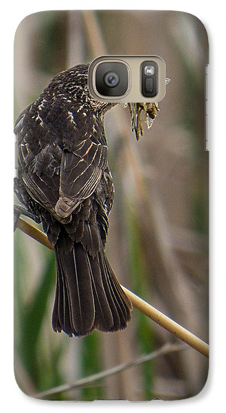 Galaxy Case featuring the photograph Big Dinner For Female Red Winged Blackbird II by Patti Deters