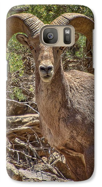 Galaxy Case featuring the photograph Bighorn Ram by Britt Runyon