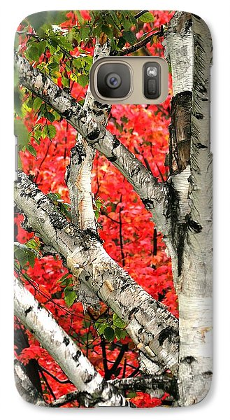 Galaxy Case featuring the photograph Birch Eclipsing Maple by Doris Potter