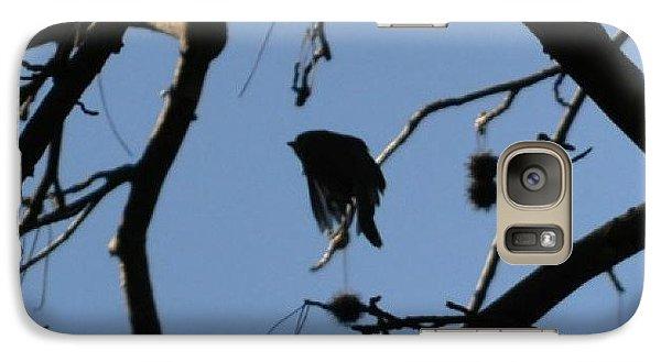 Galaxy Case featuring the photograph Bird In Flight by Tara Potts