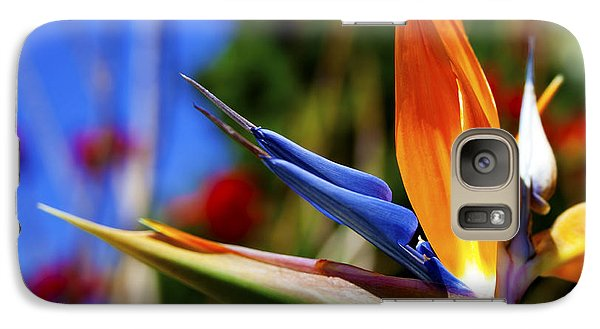 Galaxy Case featuring the photograph Bird Of Paradise Open For All To See by Jerry Cowart